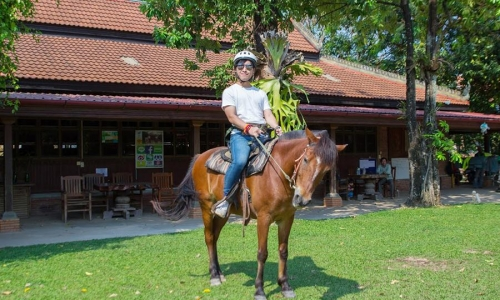 The Happy Ranch Horse Farm, Siem Reap